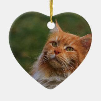 MainCoon Katze Ornament