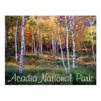Maine, Acadia National Park, Autumn Postcard
