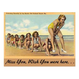 Maine, bellezas que se divierten tarjeta postal