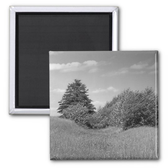 Maine_Black+White_144 Magnet