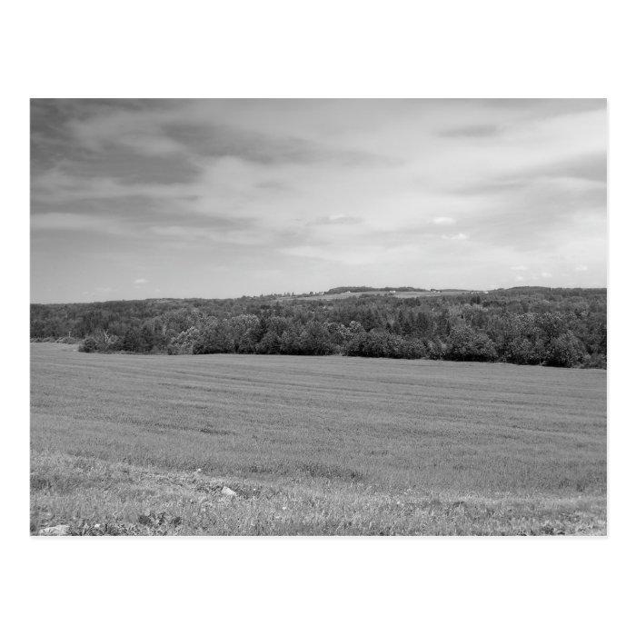 Maine_Black+White_152 Postcard