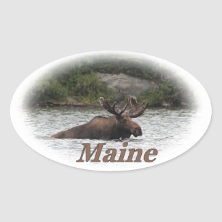 Maine Bull Moose Oval Sticker