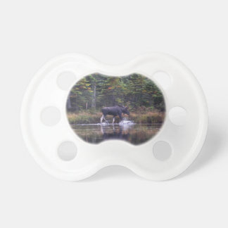 Maine Bull Moose Baby Pacifier