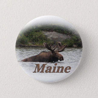 Maine Bull Moose Pinback Button