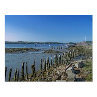 Maine_Coast_16 Postcard