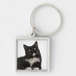 Maine Coon (15 months old) Keychain