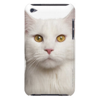 Maine Coon (8 months old) 2 Barely There iPod Cover