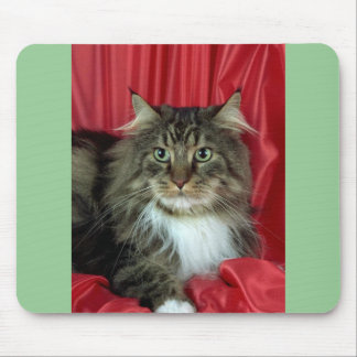 Maine Coon, brown tabby and white Mouse Pad
