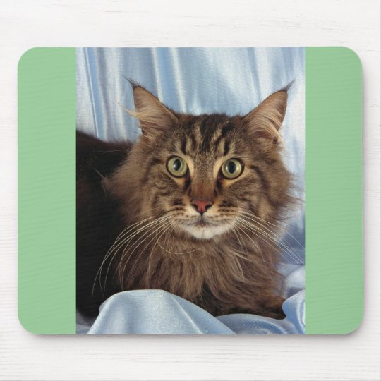 Maine Coon, brown tabby Mouse Pad