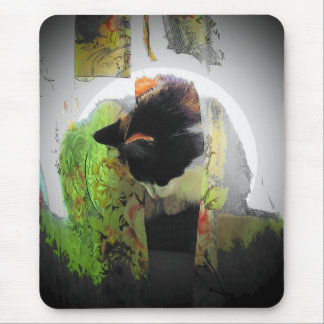 Maine Coon Calico Cat in soft light. Mouse Pad