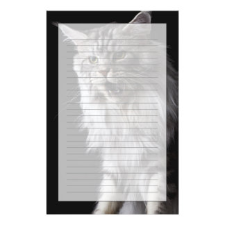 Maine Coon cat 2 Stationery