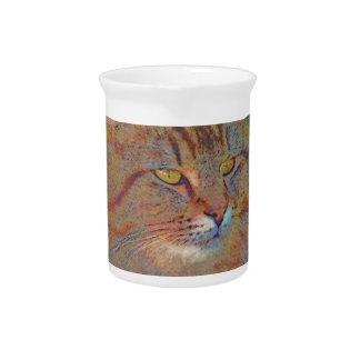 Maine Coon Cat Art Portrait Cat-lover Gift Pitchers