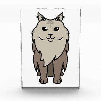 Maine Coon Cat Cartoon Award