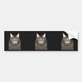 Maine Coon Cat Cartoon Paws Bumper Sticker