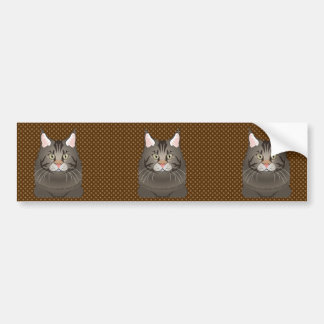 Maine Coon Cat Cartoon Paws Bumper Stickers