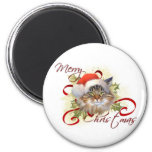 Maine Coon Cat Christmas Magnet