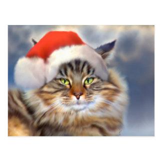 Maine Coon Cat Christmas Portrait Postcard