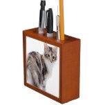 Maine Coon cat Desk Organizer