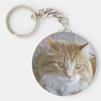Maine Coon Cat Face Key Ring Keychain
