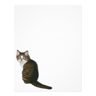 Maine Coon Cat Flyer