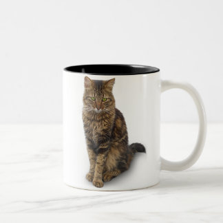 Maine Coon Cat Two-Tone Coffee Mug