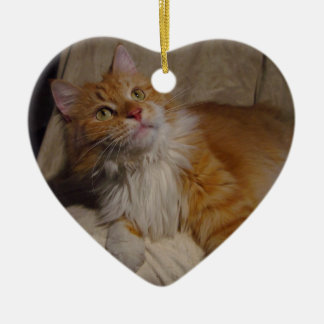 Maine Coon cat Ornament