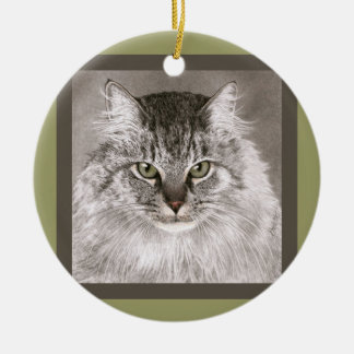 "Maine Coon Cat Ornament - ""Merlin"""