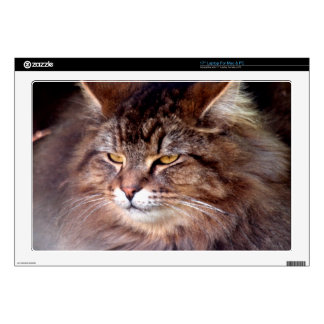 """Maine Coon Cat Portrait for Pet-lovers Decals For 17"""" Laptops"""