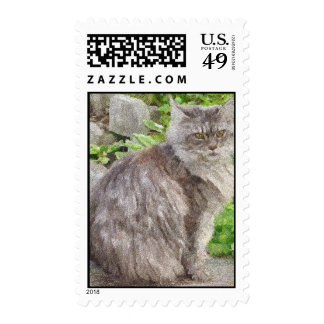 Maine Coon Cat Postage Stamps