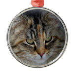 Maine Coon cat Potrait Round Metal Christmas Ornament
