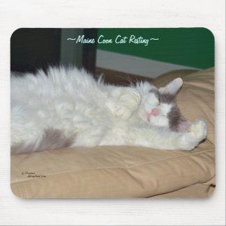 Maine Coon cat sleeping Mousepad