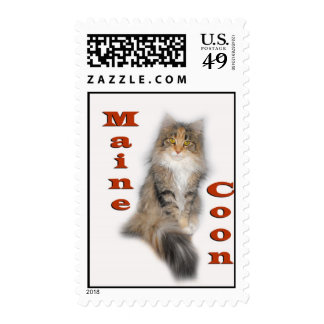Maine Coon cat - Sonata Postage