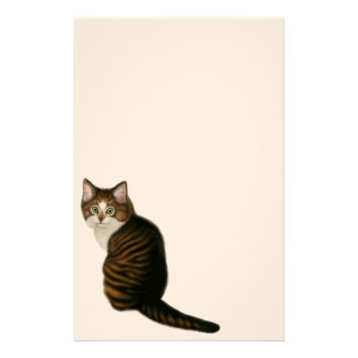 Maine Coon Cat Stationery