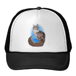 MAINE Coon Cat Trucker Hat