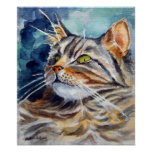 Maine Coon Cat wall Poster Print