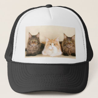 Maine coon Cats Cap