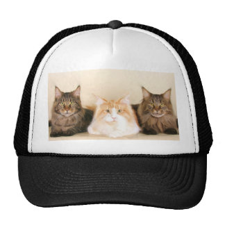 Maine coon Cats Cap Trucker Hat