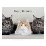 Maine Coon cats cute photo custom birthday card