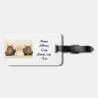 Maine Coon cats Luggage Tag