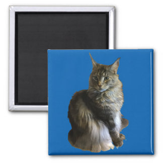 Maine Coon cool Stewie 2 Inch Square Magnet