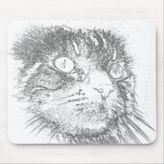 Maine Coon Face Mouse Pad