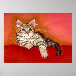 Maine Coon Kitten Cat Portrait Print
