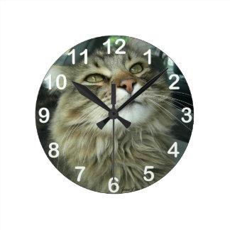 Maine Coon kitty Round Clocks