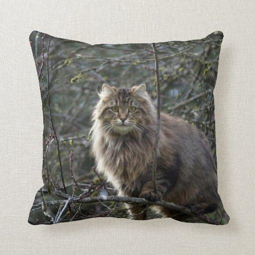 Maine Coon Long-hair Tabby Cat Animal Pet Throw Pillow Zazzle