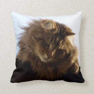 Maine Coon Long-hair Tabby Cat Throw Pillow