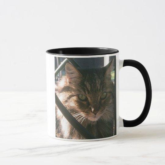 Maine Coon (mug) Mug