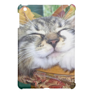 Maine Coon Nose, Cute Kitty Cat Kitten Sleeping Cover For The iPad Mini