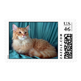 Maine Coon red tabby Stamps