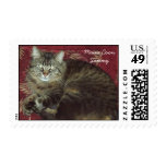 Maine Coon Sammy the Cat Postage Stamps