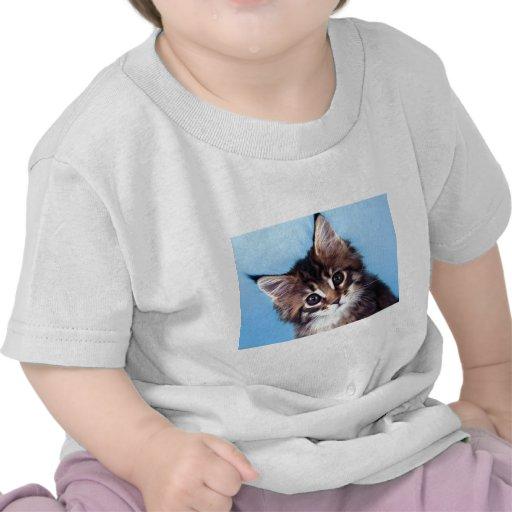 Maine Coon Tshirts